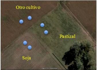 Figura 1 metodologia