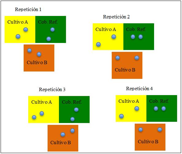 Figura 2 metodologia